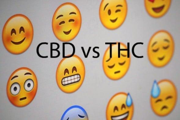 CBDvsTHC